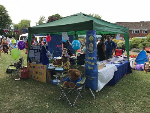 Mayors Picnic 2018 stall